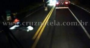 Morador de Muritiba bate em cavalo e morre na BR-101