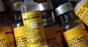 Governo já negocia importação da vacina contra a febre amarela
