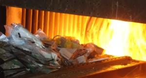 Nazaré das Farinhas: droga armazenada há cinco anos é incinerada pela polícia